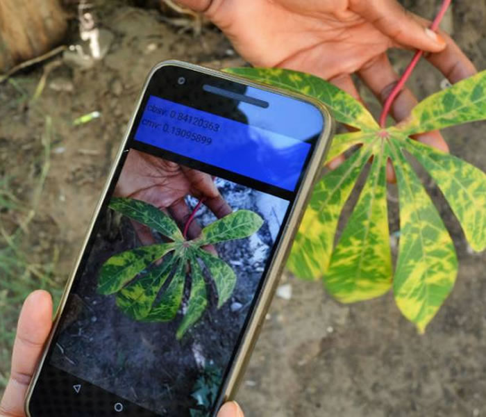 Agriculture Mobile Services